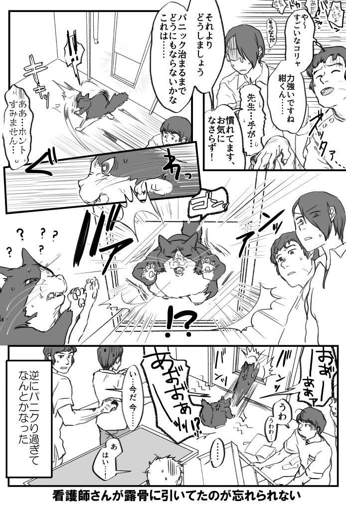 ビビリ猫の紺ちゃん画像4