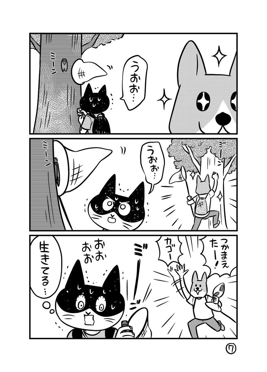 夏休み体験漫画画像7