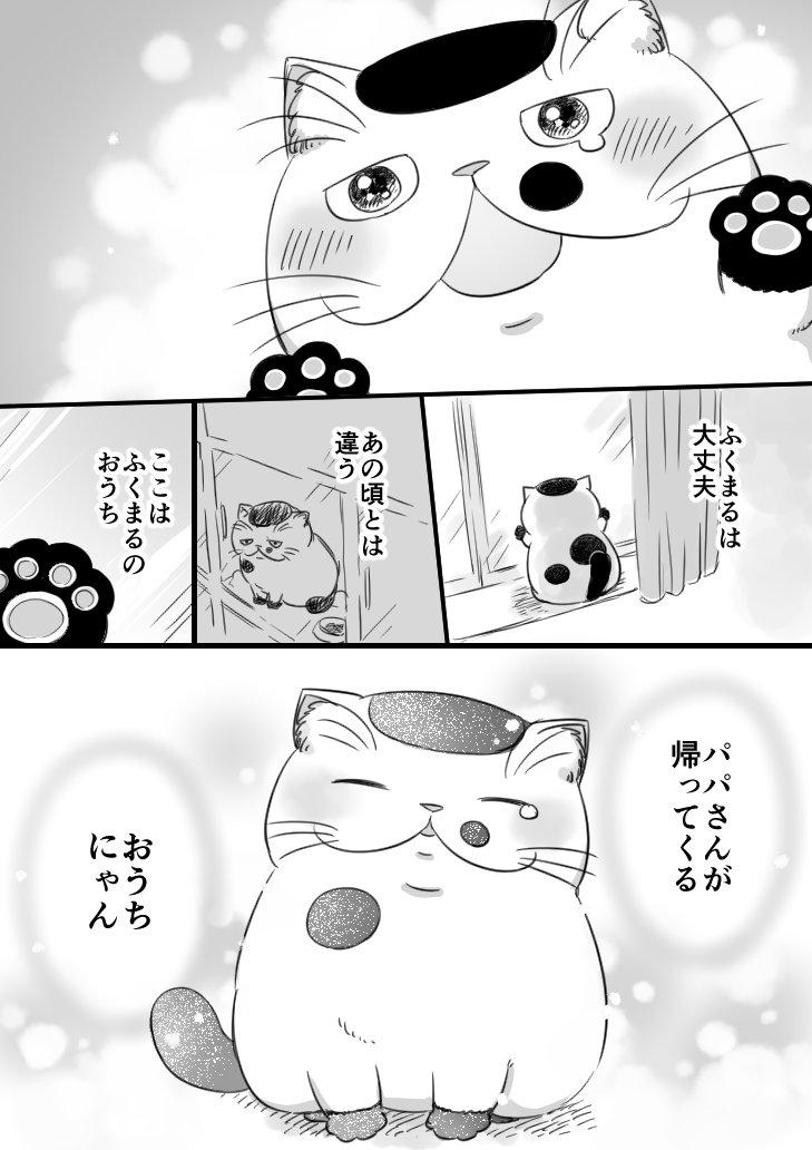 おじさまと猫画像12