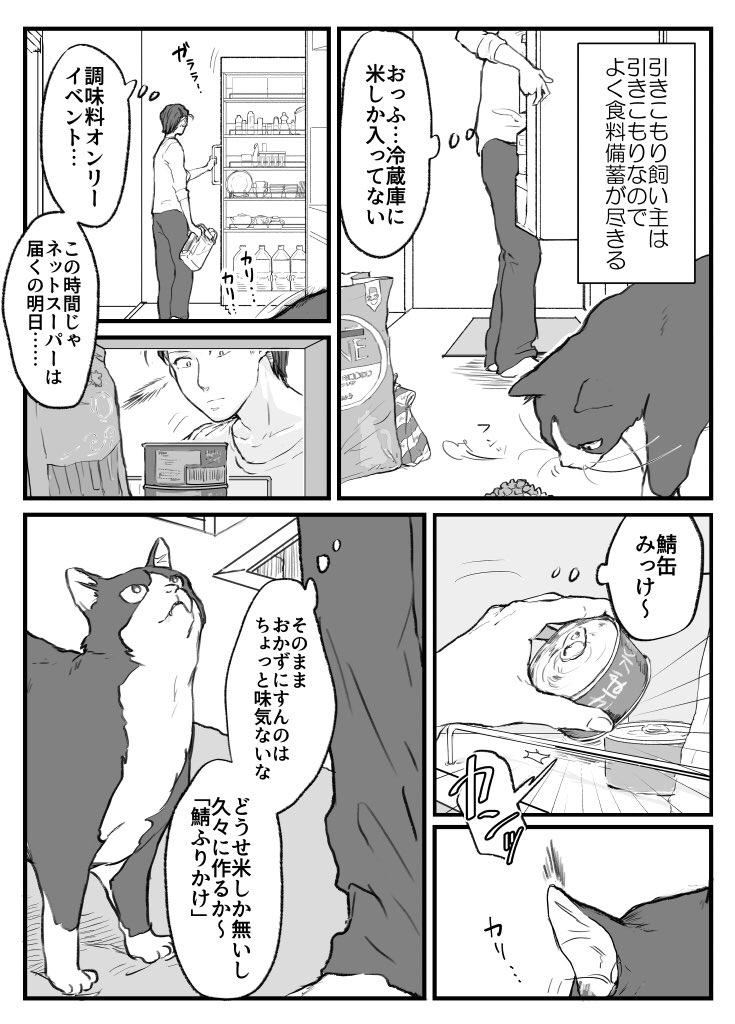 超ビビリな猫の紺ちゃん画像