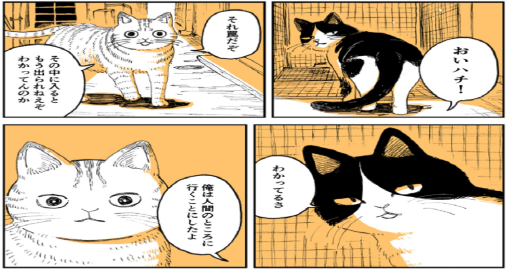 野良のボス猫が保護されようとする話が、涙なしでは読み切れなかった