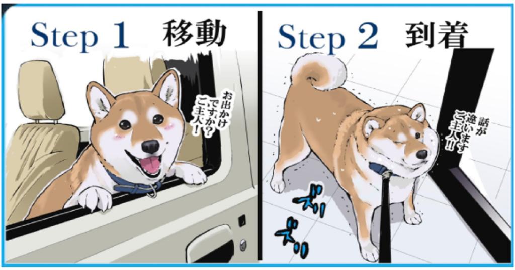 ウチの犬の狂犬病予防接種の一連の流れ