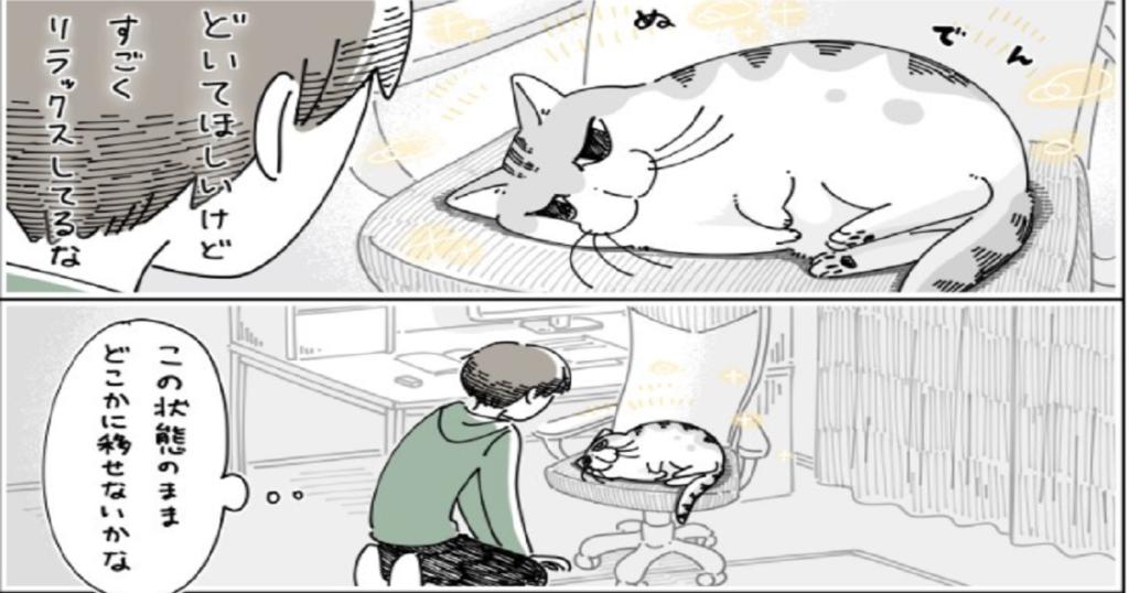 ネコを移す